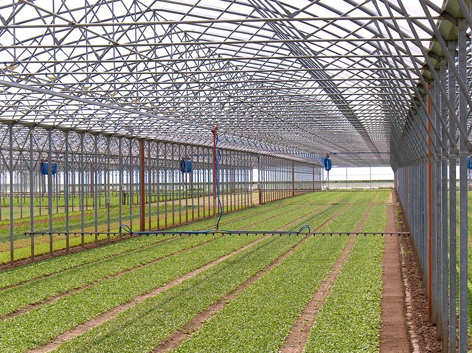 Irrigatore mobile monorotaia per serre IRMO11 - URBINATI SRL